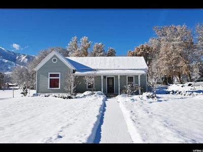 Mendon Single Family Home For Sale: 367 N Main St