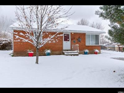 Weber County Single Family Home For Sale: 1141 E Dan St N