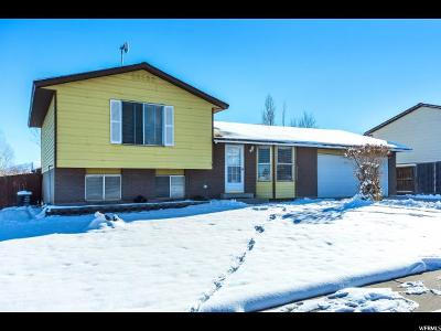 West Valley City Single Family Home For Sale: 4189 S 6180 W
