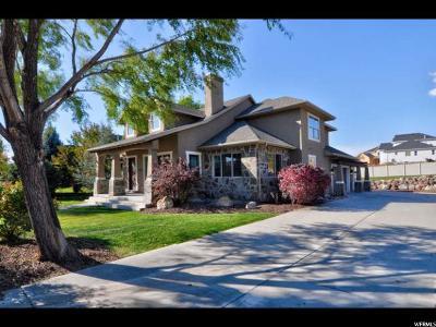 South Jordan Single Family Home For Sale: 11418 S 3420 W