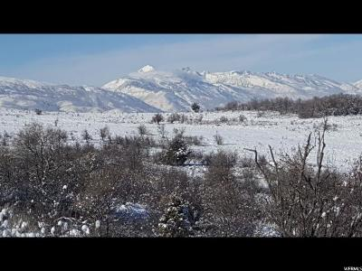 Weber County Residential Lots & Land For Sale: 2313 S West Ridge Rd