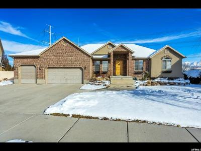 Draper Single Family Home For Sale: 13137 S 245 W
