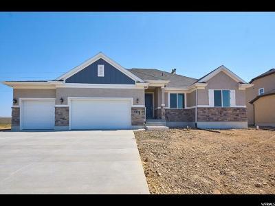 Davis County Single Family Home For Sale: 617 S 1800 W