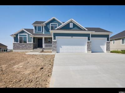 Layton Single Family Home For Sale: 614 S 1800 W