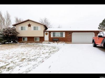 Weber County Single Family Home For Sale: 1384 N Franklin Cir W