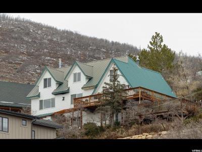 Wasatch County Single Family Home For Sale: 245 Big Matterhorn Cir #219