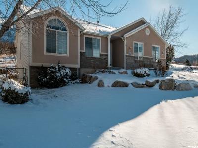 Davis County Single Family Home For Sale: 7924 S 2450 E