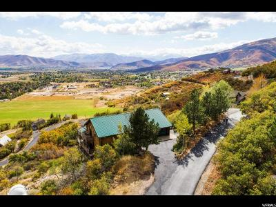 Wasatch County Single Family Home For Sale: 333 Bern Way