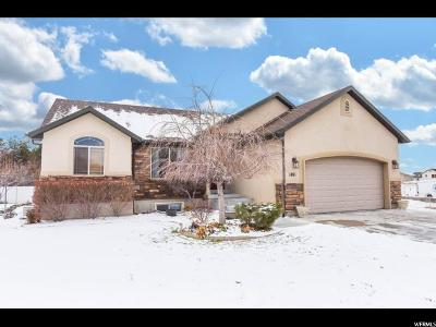 Davis County Single Family Home For Sale: 1861 N 1275 W