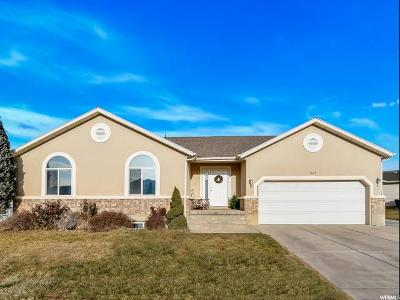 Davis County Single Family Home For Sale: 7462 Shay Ln