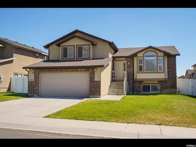 Weber County Single Family Home For Sale: 867 W Pebble Brook Dr