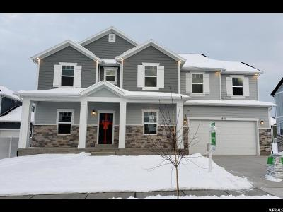 Salt Lake County Single Family Home For Sale: 8113 S 6520 W #211