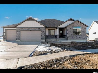 Stansbury Park Single Family Home For Sale: 817 S 1600 W