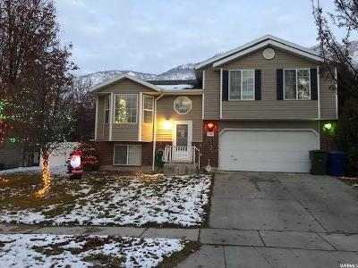 Weber County Single Family Home For Sale: 1394 N Fowler E
