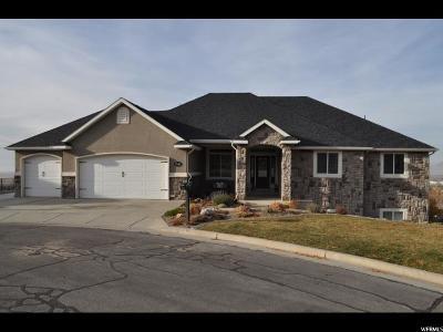 Single Family Home For Sale: 2532 S Elm Grove Dr