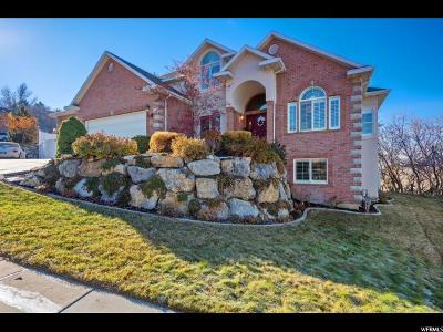Davis County Single Family Home For Sale: 65 N Oakwood Dr