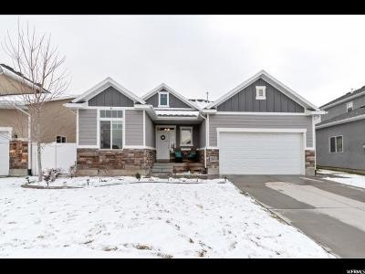 Davis County Single Family Home For Sale: 2485 W Field Stone Way