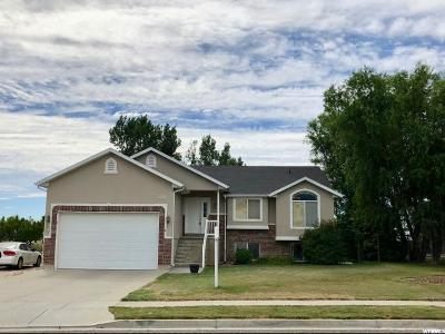 Weber County Single Family Home For Sale: 2797 N 2675 W