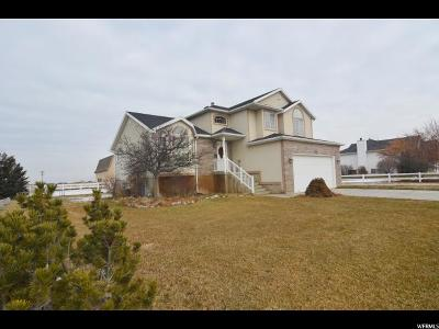 Weber County Single Family Home For Sale: 3588 W 4300 S