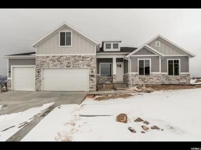 Saratoga Springs Single Family Home For Sale: 1642 S Sage View Ct