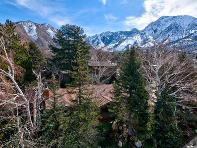 Salt Lake City Single Family Home For Sale: 4133 S Achilles Dr