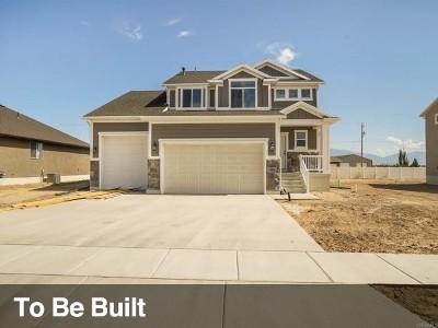Davis County Single Family Home For Sale: 3111 W 800 N