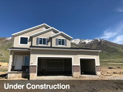 Tooele County Single Family Home For Sale: 188 Tram Rock Rd