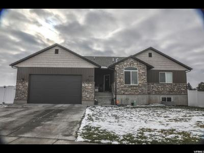 Tremonton Single Family Home For Sale: 254 S 900 W