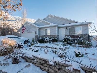 Weber County Single Family Home For Sale: 1041 E Allen Peak Cir E