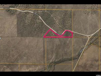 Residential Lots & Land For Sale: 2900 E Sheep Trail Rd