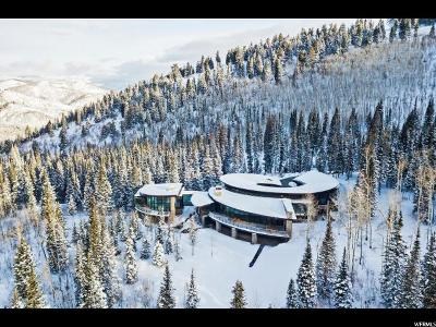 Park City Single Family Home For Sale: 217 White Pine Canyon Rd