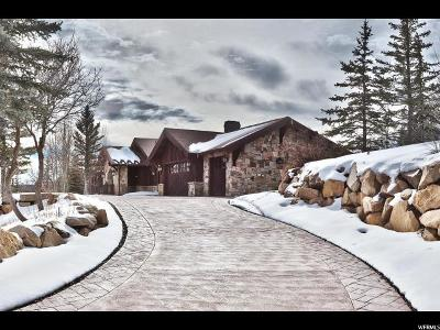 Park City Single Family Home For Sale: 1107 Snow Berry St