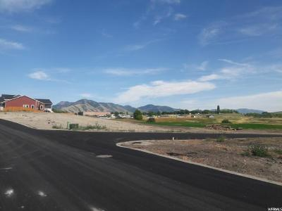 Hyrum Residential Lots & Land For Sale: 762 W 50 N