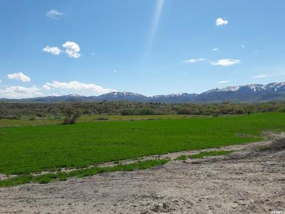 Hyrum Residential Lots & Land For Sale: 822 W 50 N