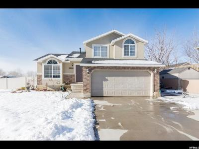 Single Family Home For Sale: 3320 S 1350 W