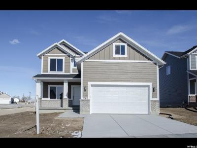 Brigham City Single Family Home For Sale: 1060 W 575 S #10