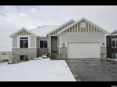 Brigham City Single Family Home For Sale: 546 S 1075 W #27