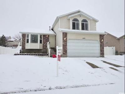 West Jordan Single Family Home For Sale: 6916 S Hoyle Cir W