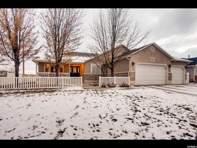 South Jordan Single Family Home For Sale: 1563 W Palmer Park Ln S