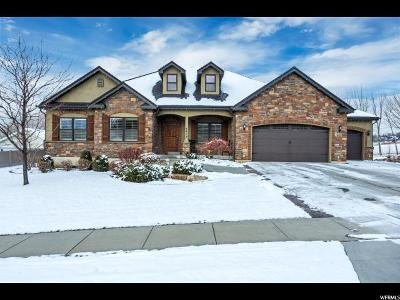 Pleasant View UT Single Family Home For Sale: $819,500