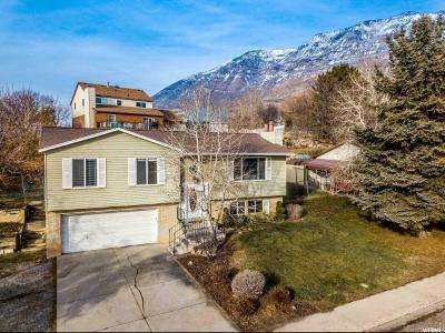 Pleasant Grove Single Family Home For Sale: 771 E 800 N