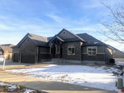 South Jordan Single Family Home For Sale: 10071 S Autumn Breeze Ln W
