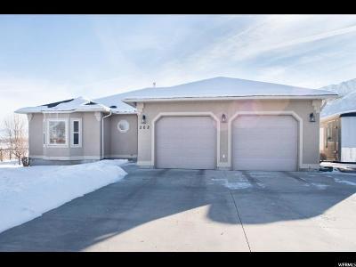 Mendon Single Family Home For Sale: 202 E 250 S