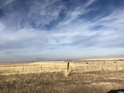 Tooele County Residential Lots & Land For Sale: 290 Taylor Rd