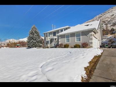 Provo Single Family Home For Sale: 3904 Foothill Dr