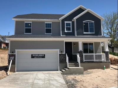 Orem Single Family Home For Sale: 489 S 1045 W #13