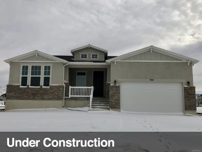 Tooele County Single Family Home For Sale: 797 W Lafayette St