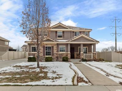 Springville Single Family Home For Sale: 1177 W 250 N