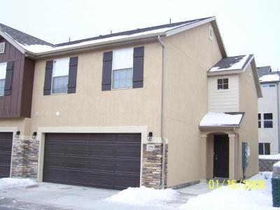 Spanish Fork Townhouse For Sale: 1294 E Willow Way