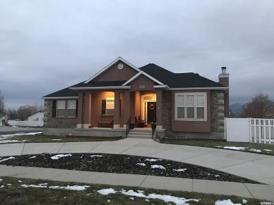 West Jordan Single Family Home For Sale: 8945 S 5080 W
